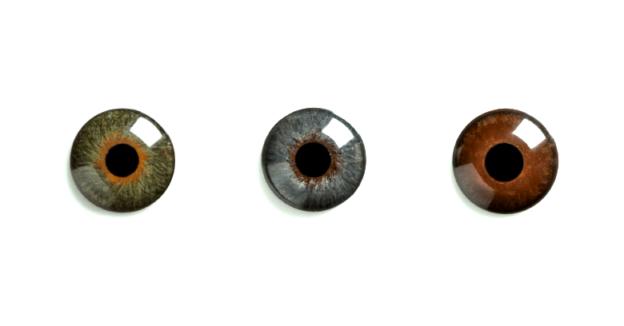 2c85618bdd Lentes de contacto protésicas - Operación de Ojos