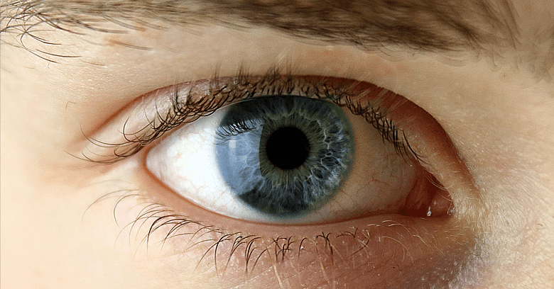 Prótesis oculares, mantenimiento y duración